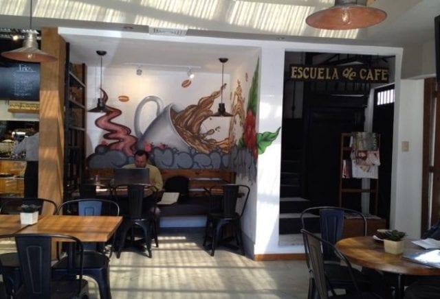 Coffee school El Injerto