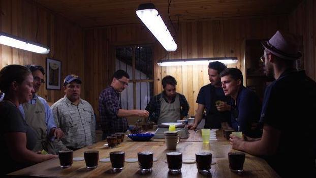 sessão de cupping