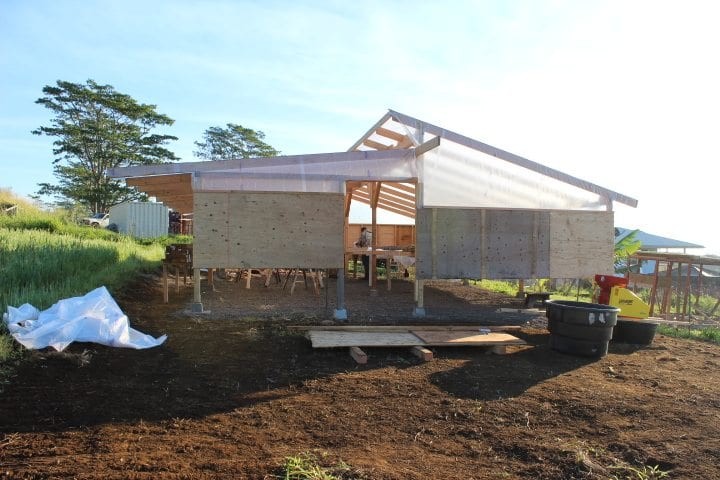 Covered raised coffee beds in Ka'u Hawaii