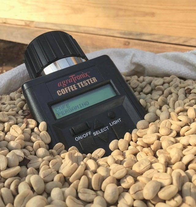AgraTRonix coffee tester in a bag of green coffee beans