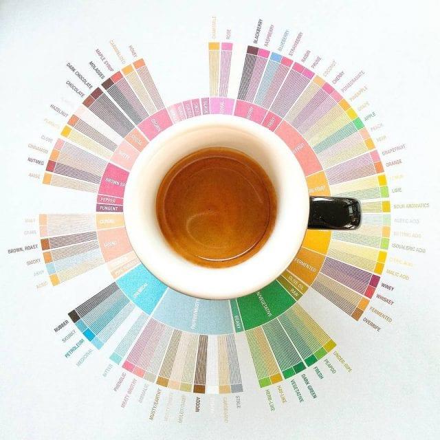 roda de sabores do café