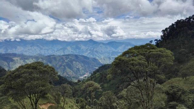 café de altitude da Colombia