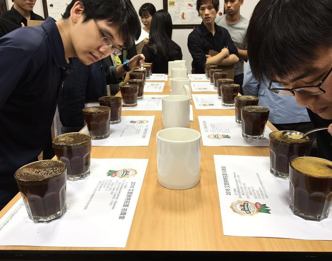 Students making a cupping