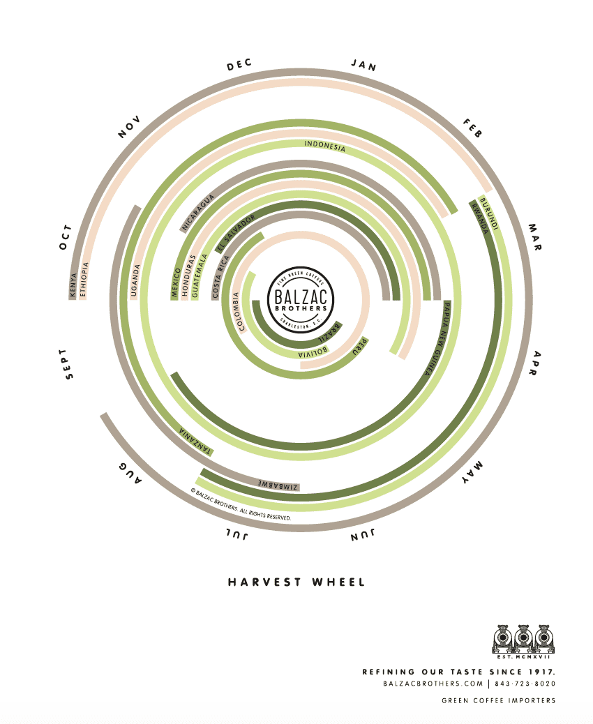 Coffee harvest wheel