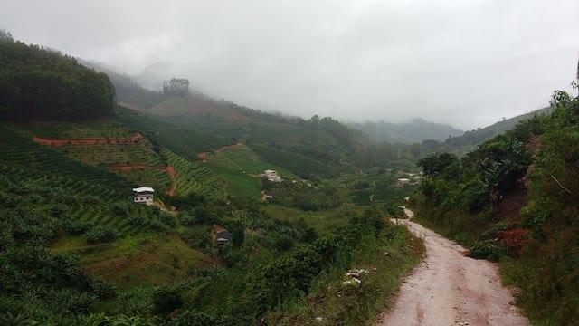 A coffee farm in the mountains of Espirito Santo, Brazil.