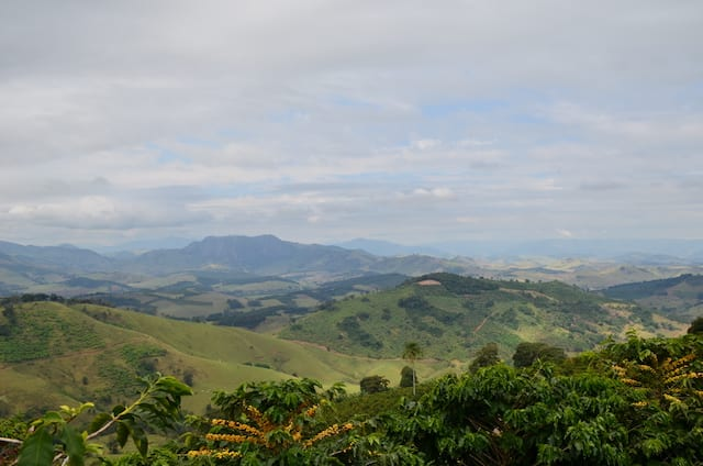 Panoramic view of Sul de Minas coffee growing region, Brazil.