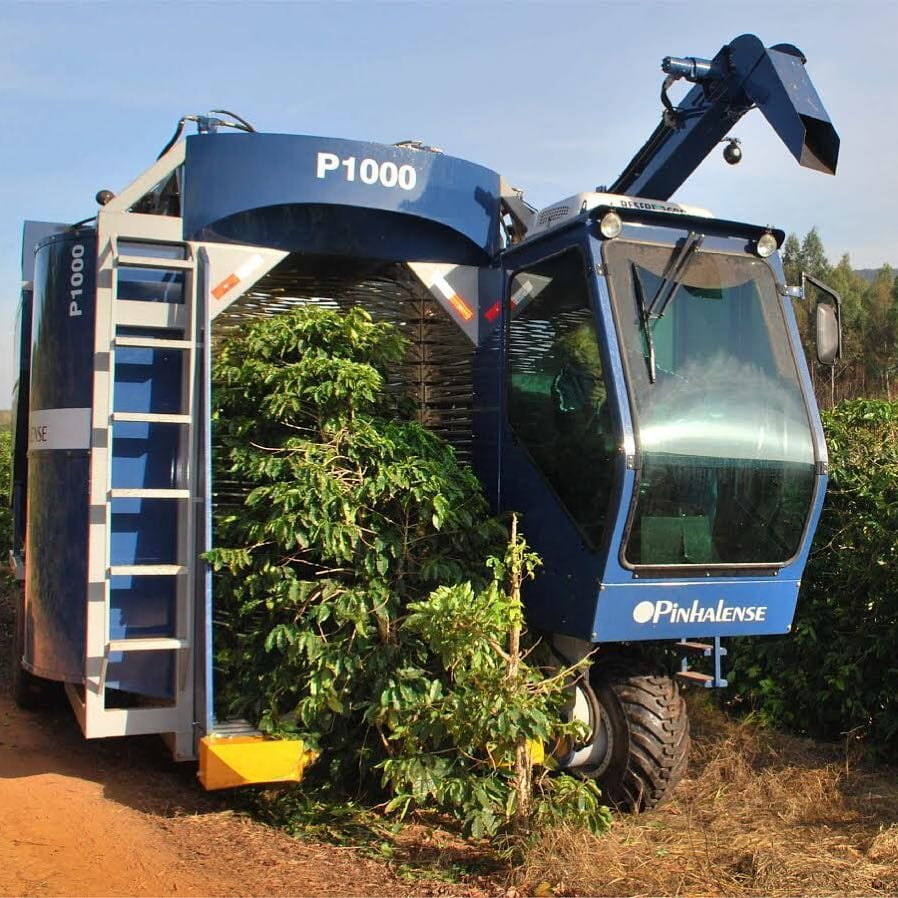 Pinhalense P1000 mechanically harvests cherries from coffee trees