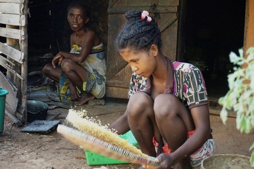 young women sifting grain