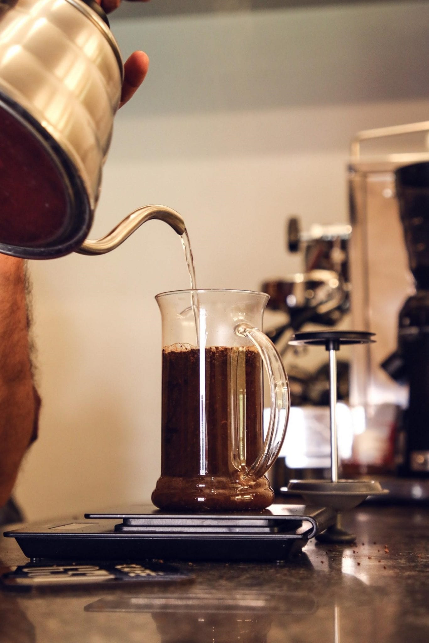 a barista brews a coffee in a french press