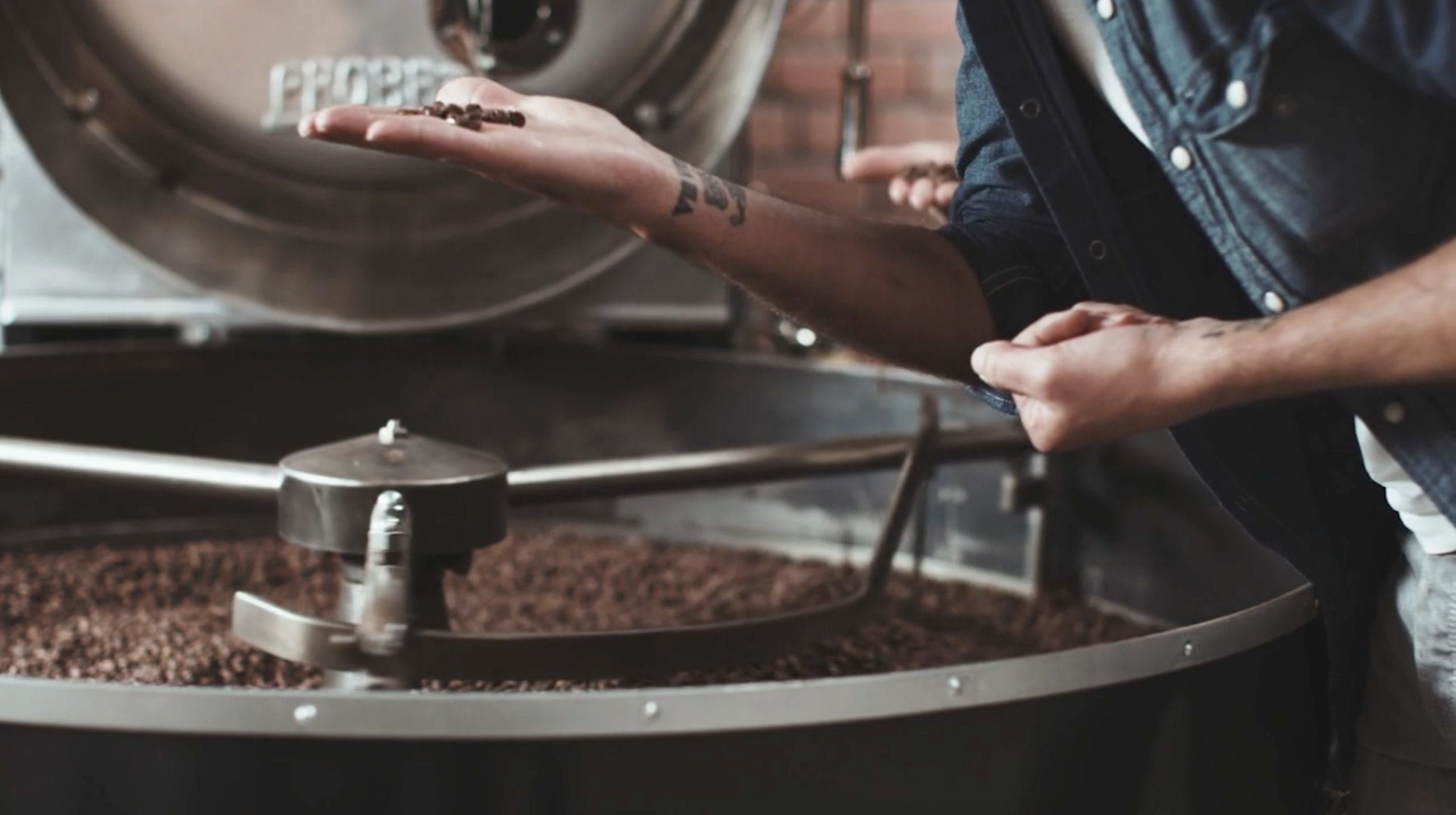 speciality coffee roasting roaster