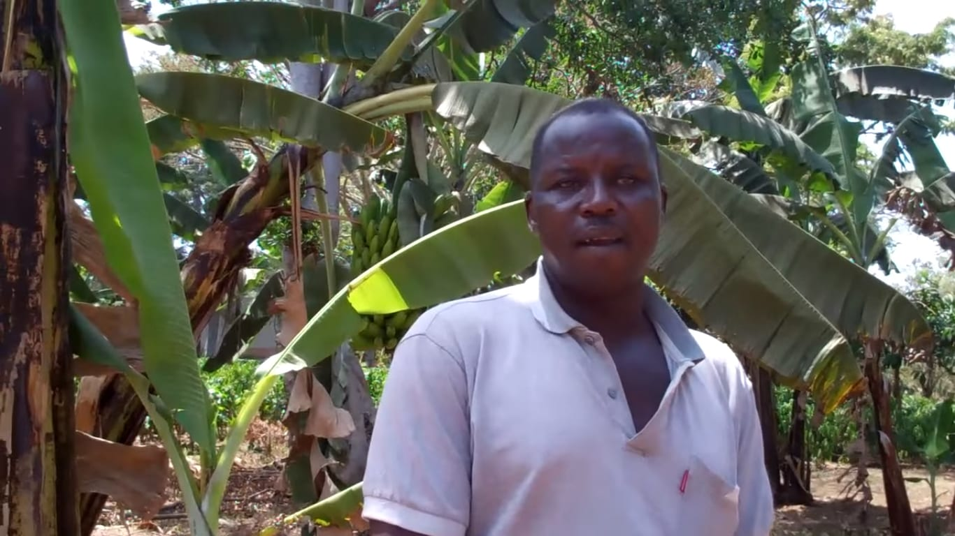 A Ugandan farmer talking about how he prepares the land for planting