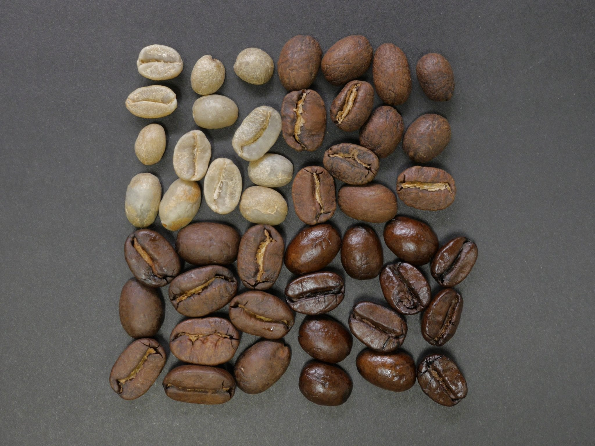 differently roasted coffee beans