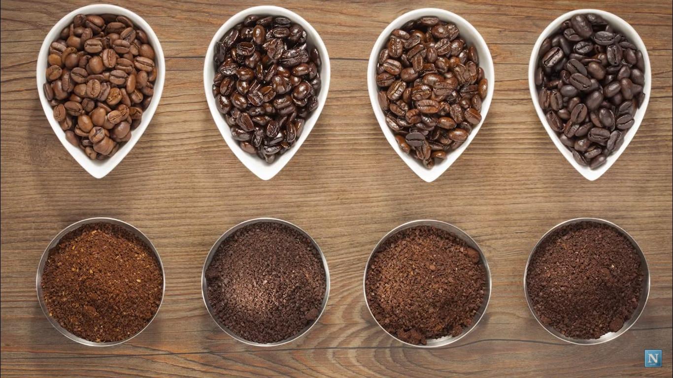 roast profiles coffee