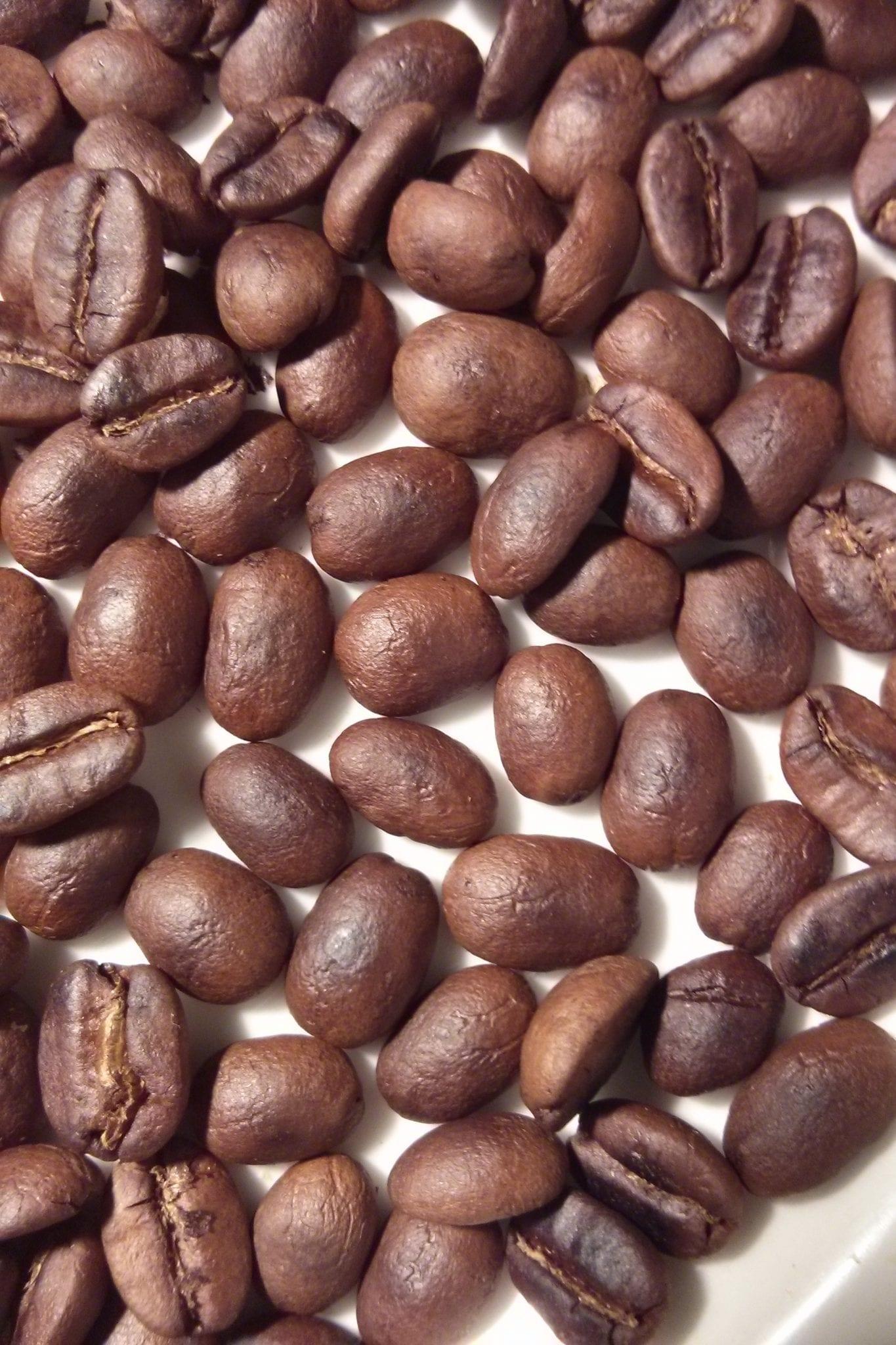 roasted australian beans