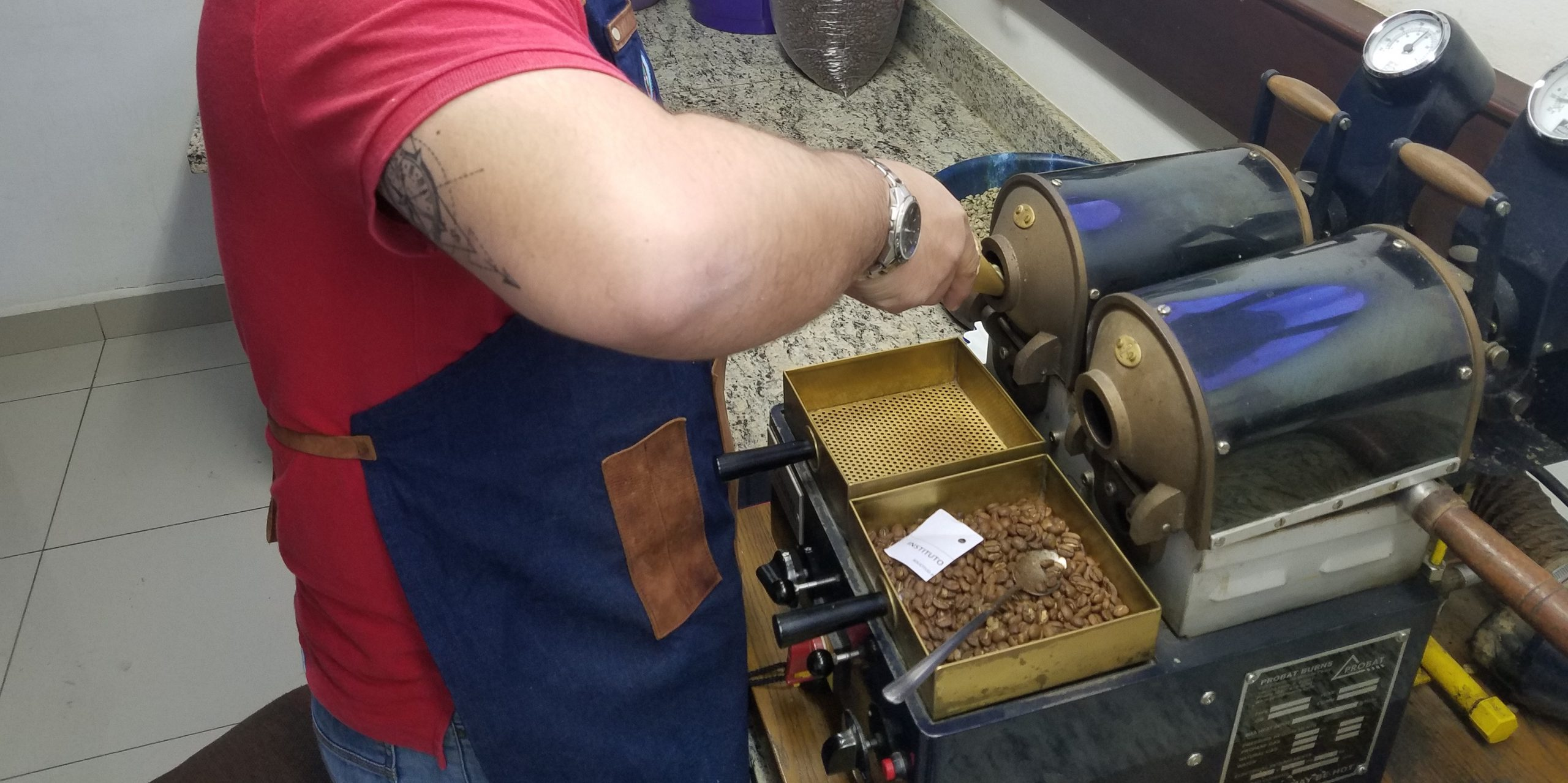 Roaster checking samples of roasted coffee beans