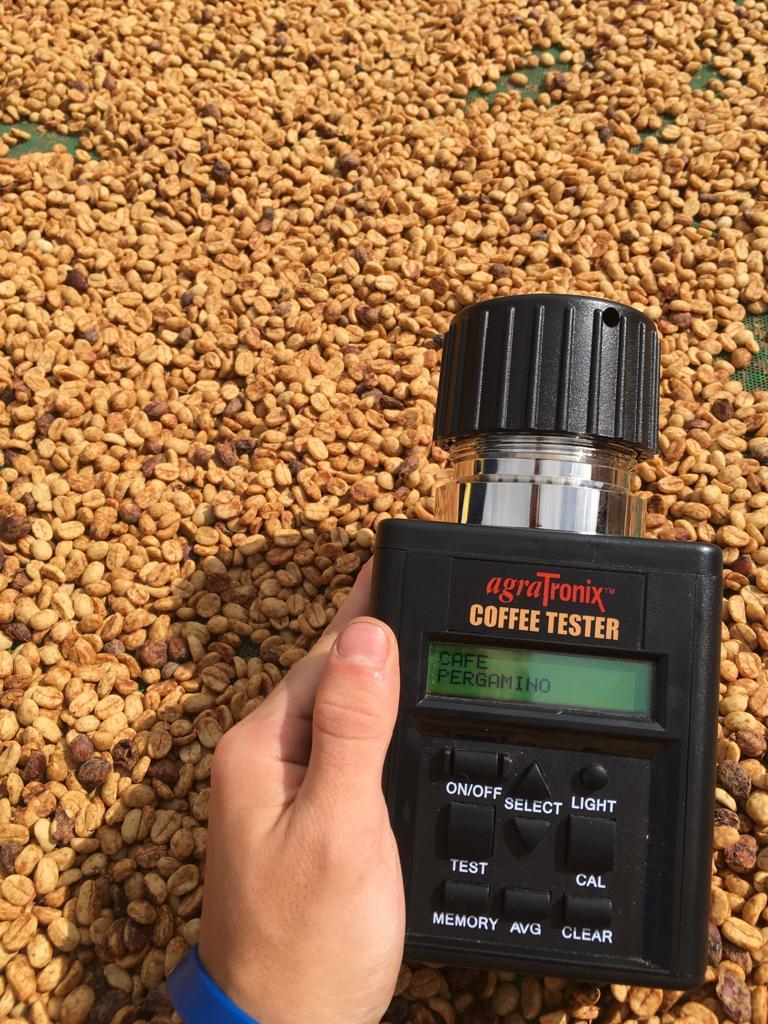 Usando um medidor de umidade para monitorar os níveis de água.