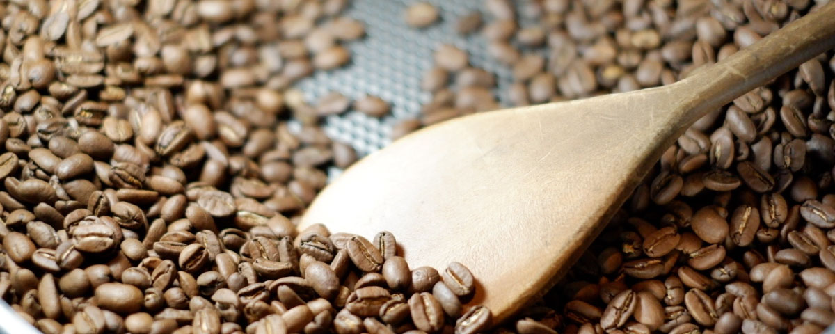 Roasted coffee beans with a wooden spoon