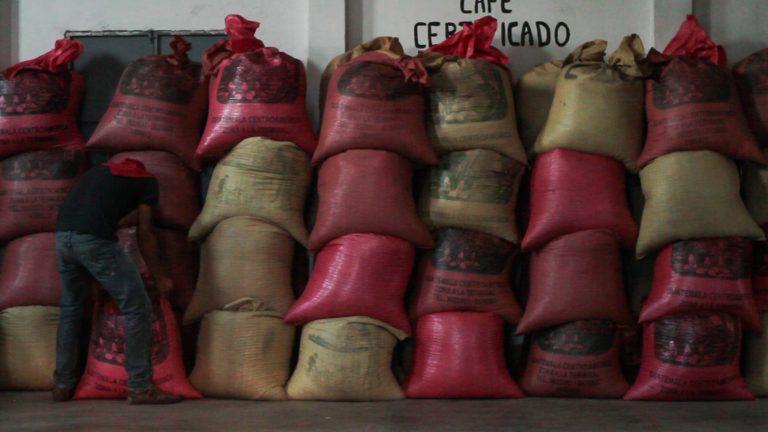 Sacas de café em um armazém na Guatemala.