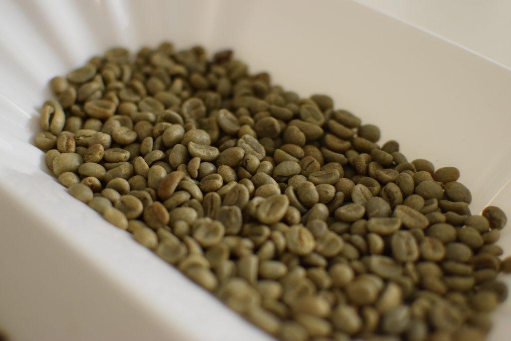 Uma bandeja de grãos verdes de café.