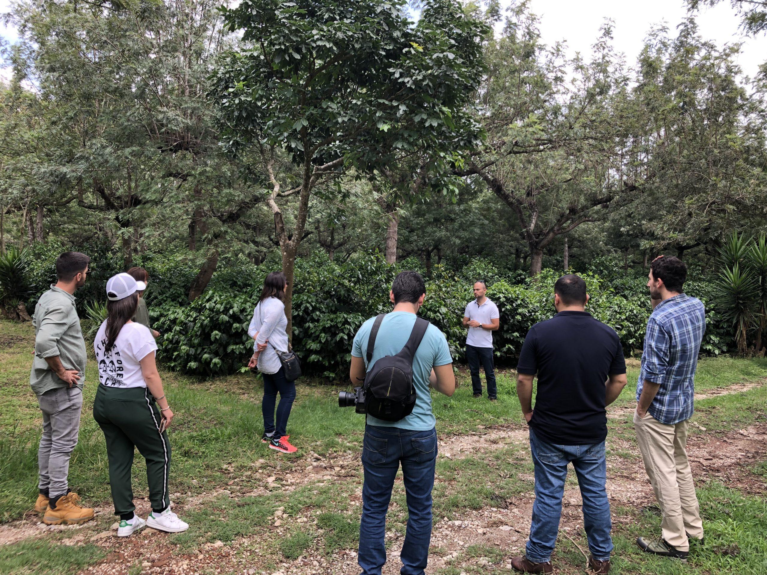 Coffee roasters visiting a coffee crop