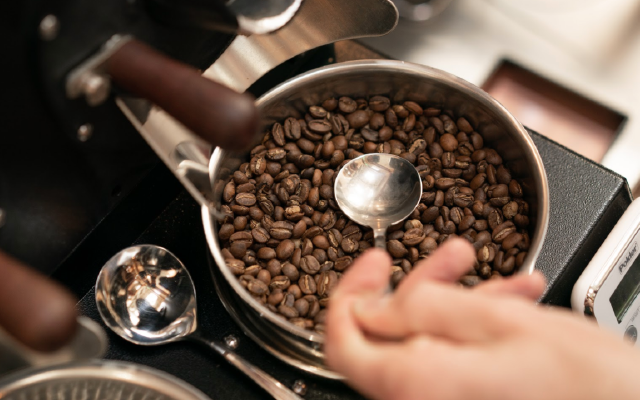 Roasted coffee beans cooling in the sample roaster