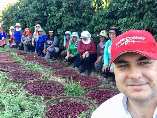 recolectores de cafe