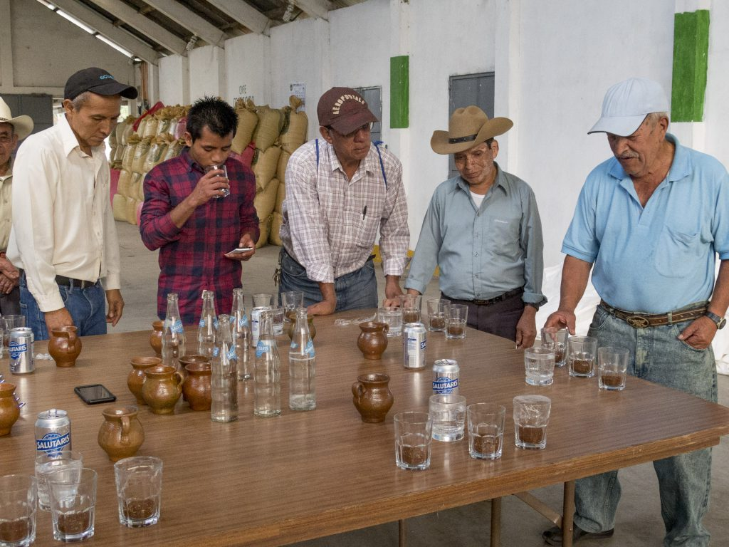 producers cupping coffees