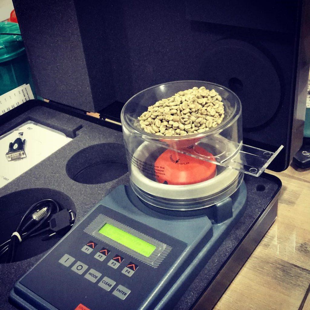 Medindo o teor de umidade do café verde antes de torrar uma batelada.