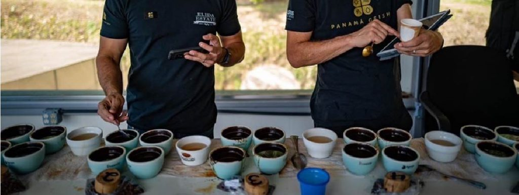 Producers doing a cupping in a farm in panama