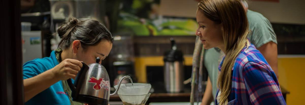 Barista brewing a Chemex