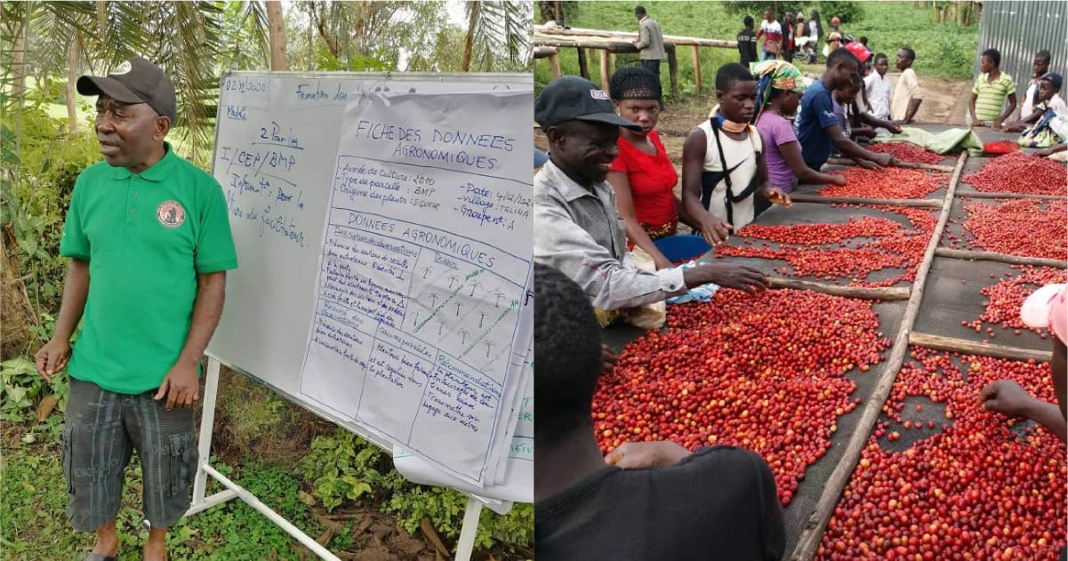 Driving Entrepreneurship In Coffee Producing Communities