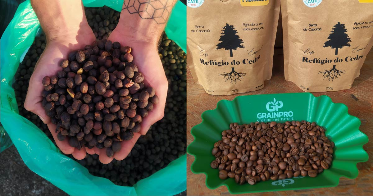 Exploring Post-Harvest Practices & Their Relationship With Coffee Quality