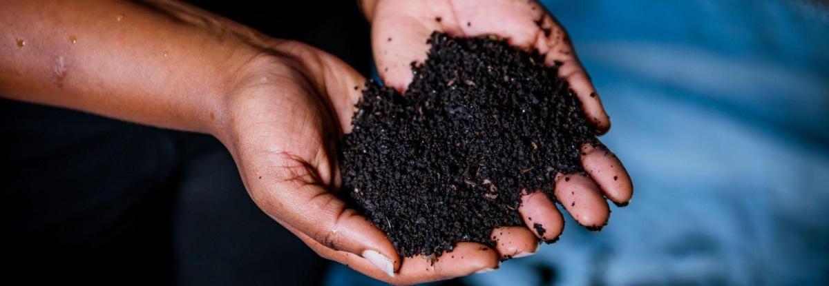 carbon neutral coffee production
