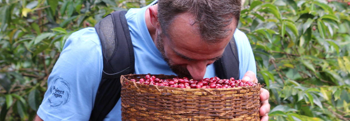 sasa smelling coffee cherries